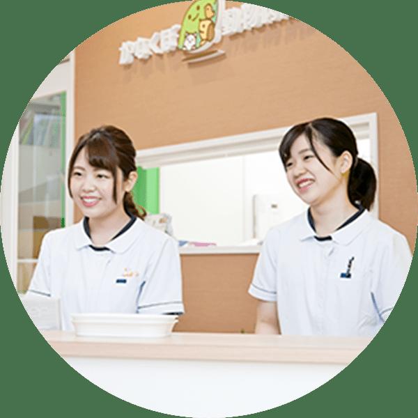 採用情報 豊田市の犬 猫 鳥 ウサギ フェレットの診療 かなくぼ動物病院